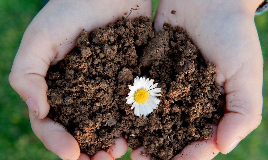 Roma, Raggi: domani in Regione progetti 2 impianti compostaggio