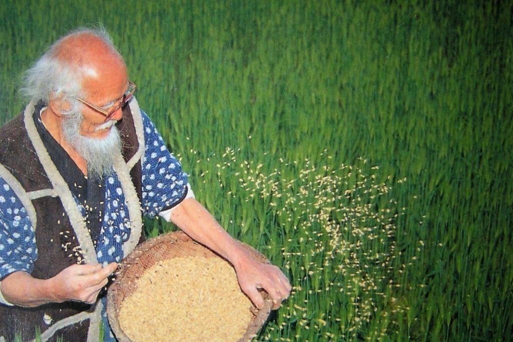 Realizzare il paradiso in terra con l'agricoltura del non fare - m5stelle.com - notizie m5s