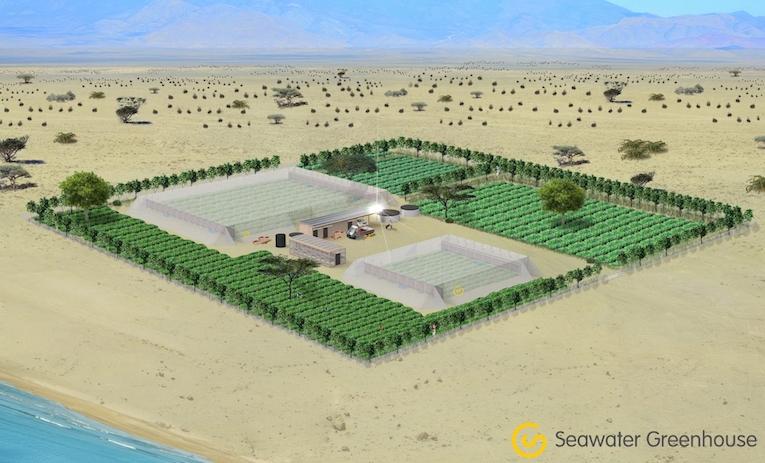 Serre 2.0: senza riscaldamento o irrigazione - m5stelle.com - notizie m5s