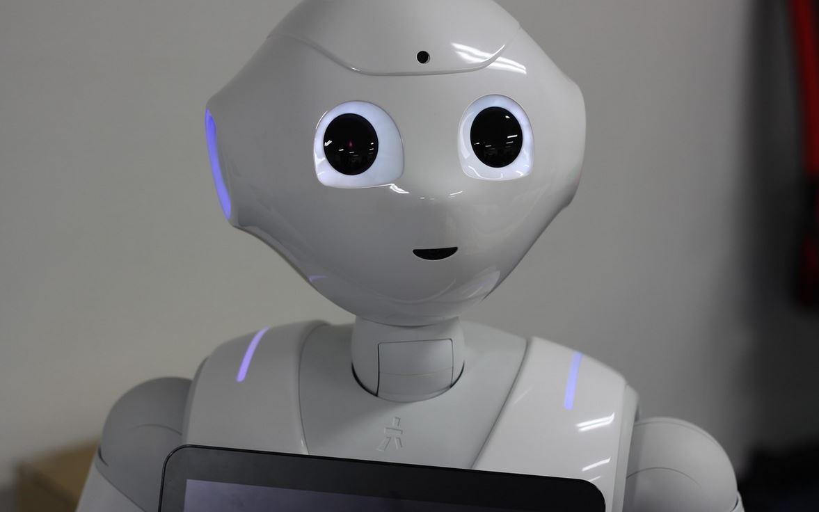 Il parlamento del regno unito chiede a un robot di for Ricerca sul parlamento