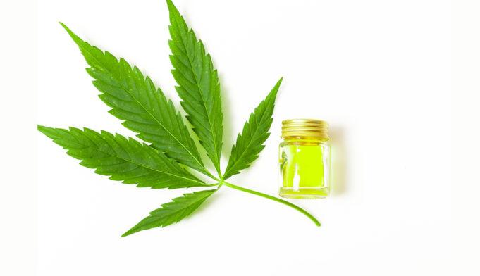 Approvato in Europa il primo farmaco a base di cannabis